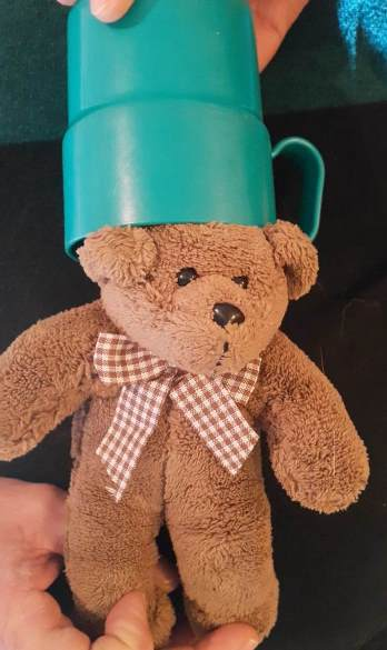 small teddy bear with plastic mug on head